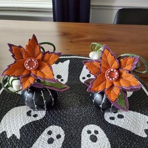 Halloween Succulent bundle